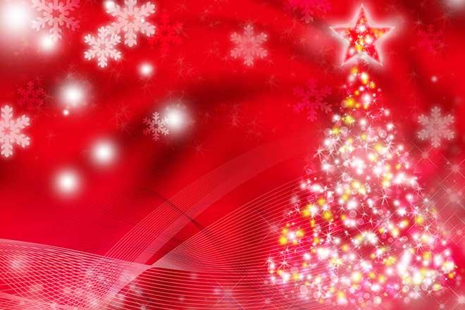 クリスマスは 何をしますか。...(n5)