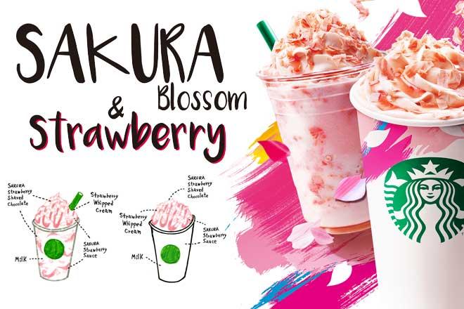 さくらラテ...(n5)<br>Sakura Latte
