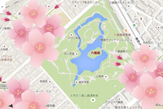 さくら...(n5)<br>Cherry blossoms